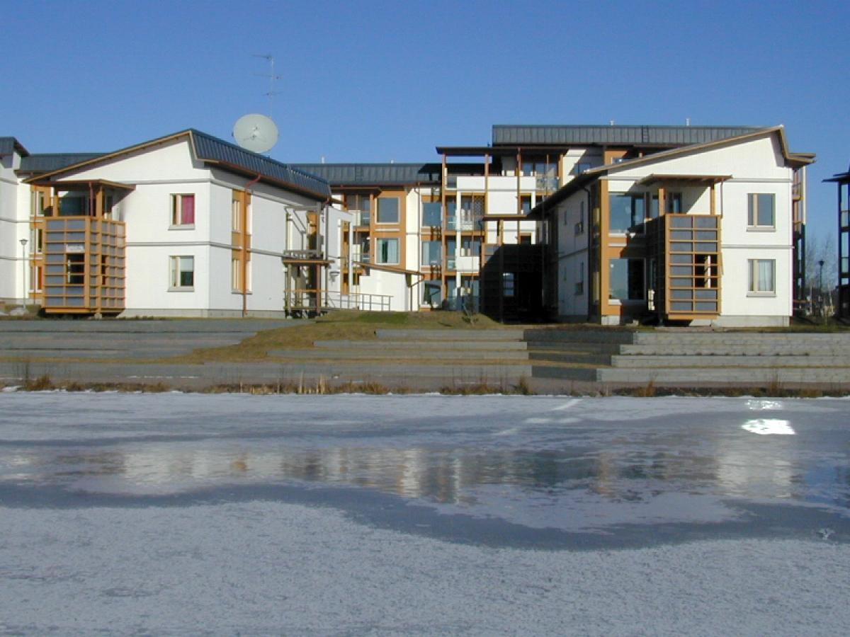 Viikin puukerrostaloalueen rakentaminen aiheutti rakennusliikkeen toimitusjohtajalla potkut.